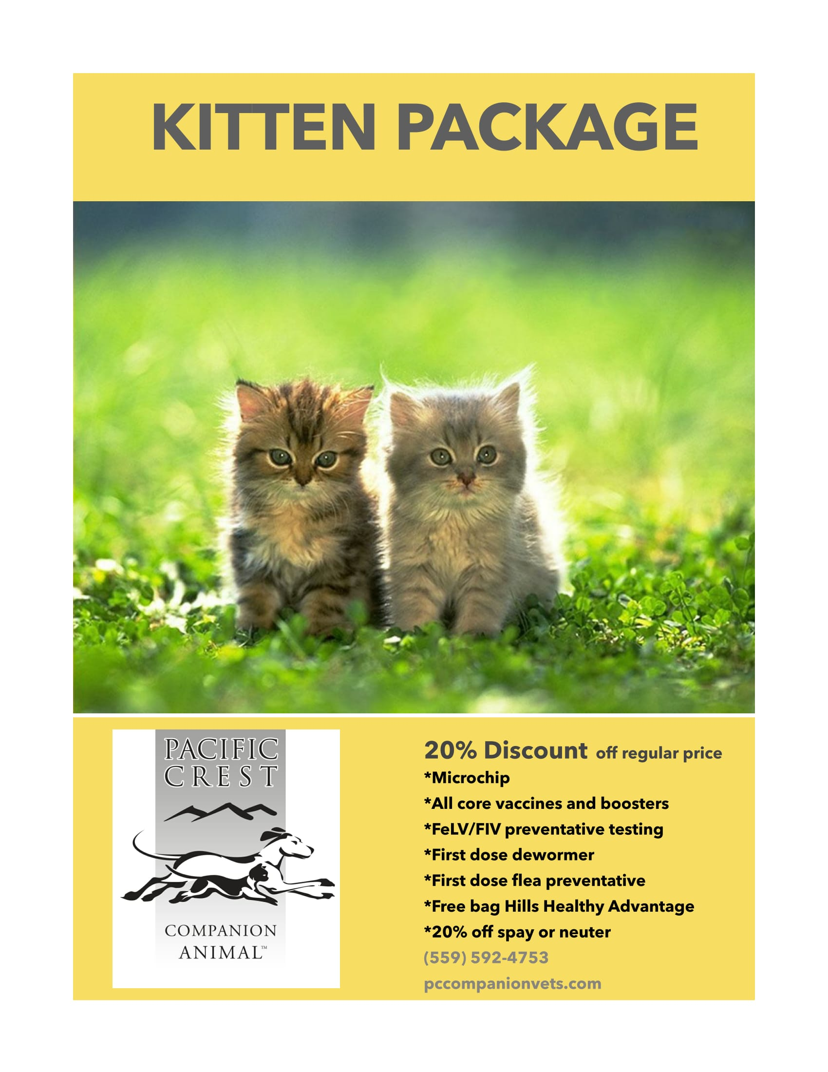 kitten package budget vets